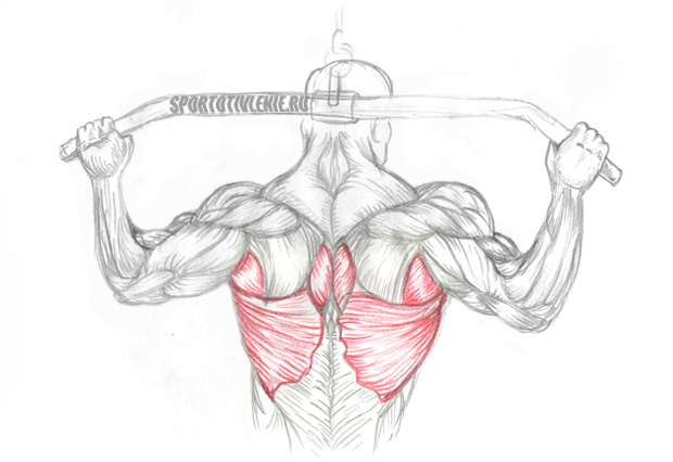 какими упражнениями можно убрать жир на руках
